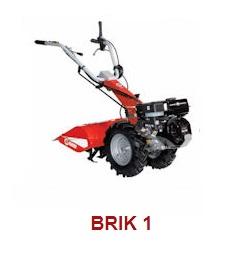BRIK-1