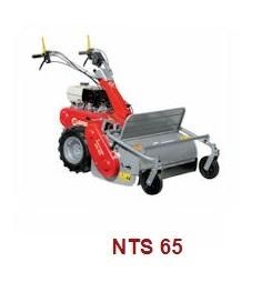 NTS-65