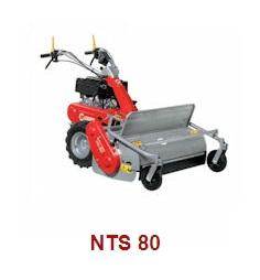NTS-80